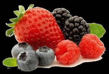 Sorbetijs van seizoensfruit
